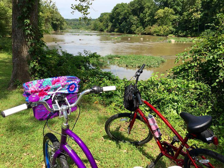Bike Rental 5